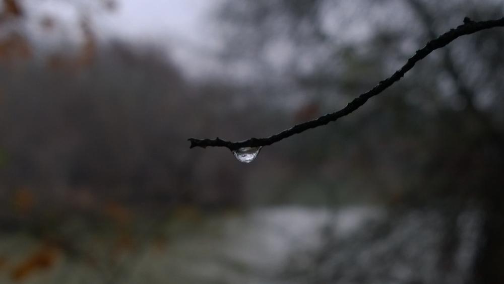 Gloom Drop