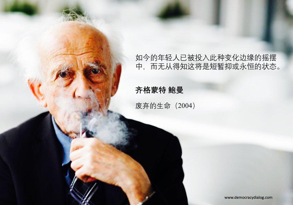 Zygmunt Bauman-Chinese