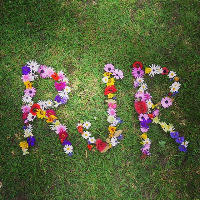 Say my name, say my name, wear it out // Cape gooseberry, poppy, daisy, borage flower, nasturtium, sweet pea, eucalypt, pohutakawa, dandy lion, regular lion (jk), margaritten, geranium, onion flower, hibiscus,  rosemary, thyme, bayhops, goats foot, beach primrose, ranunculus // Devi's Garden, Warren's Folly.