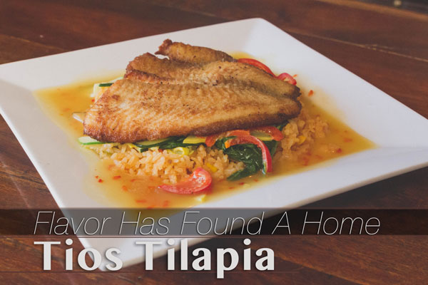 _MG_8507-Tios-Talapia-GRAPHIC-WEB.jpg