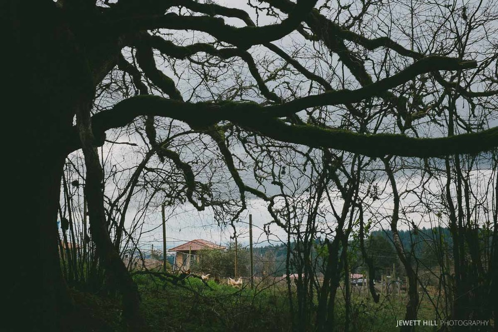 overcast-4.jpg