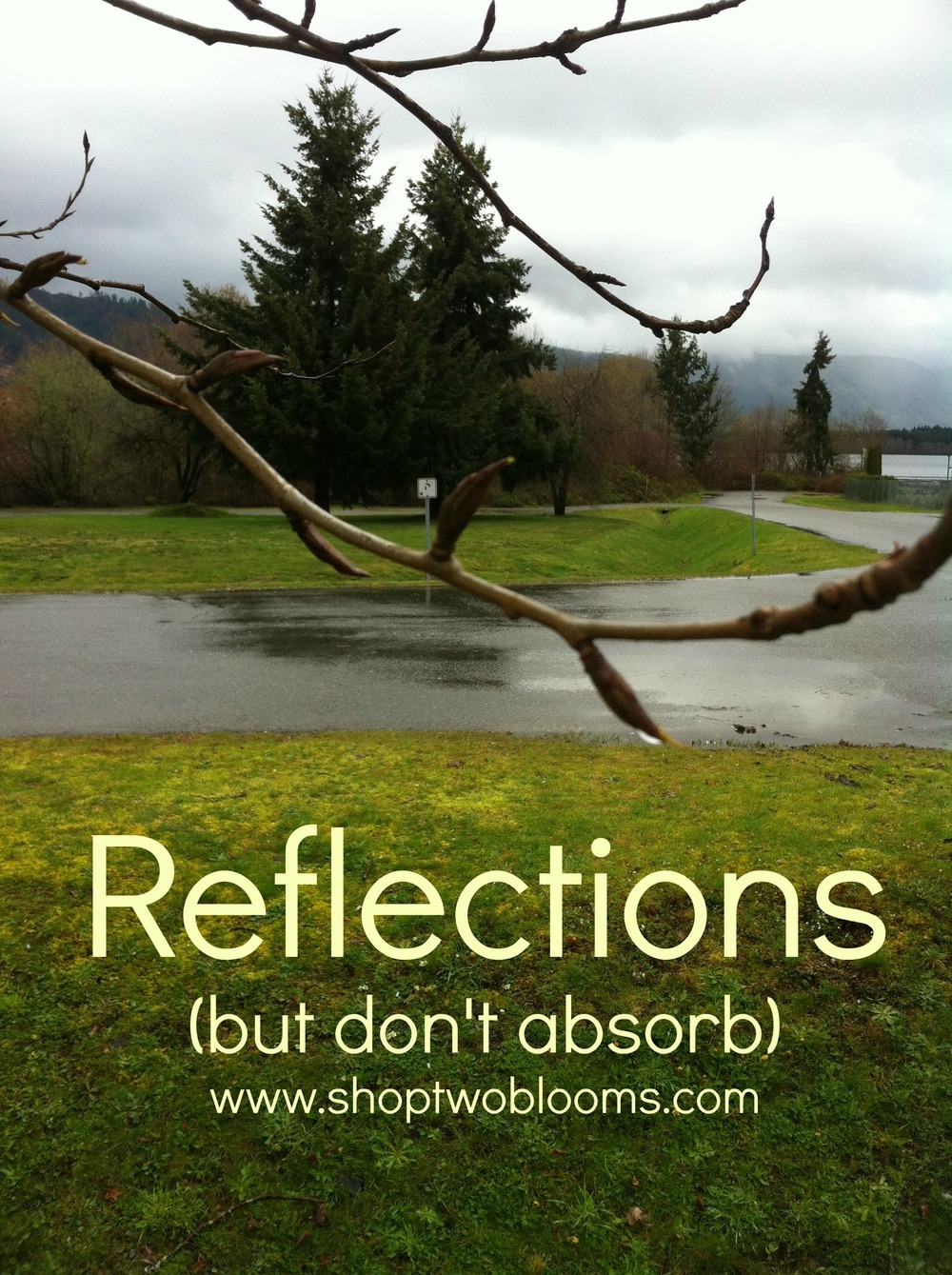 shoptwoblooms Reflections words.jpg