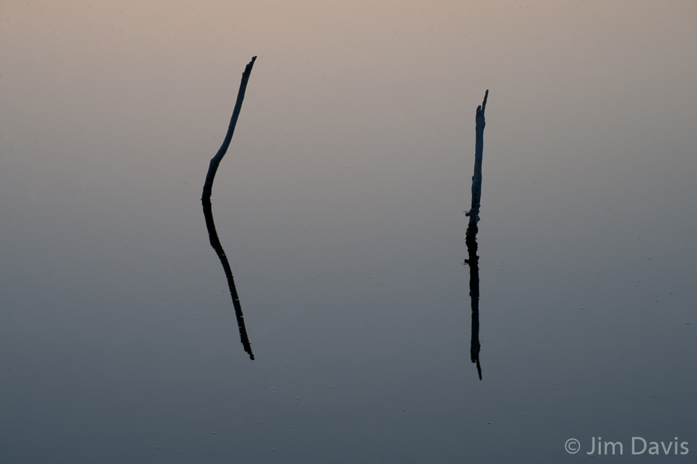 Abstract--3.jpg