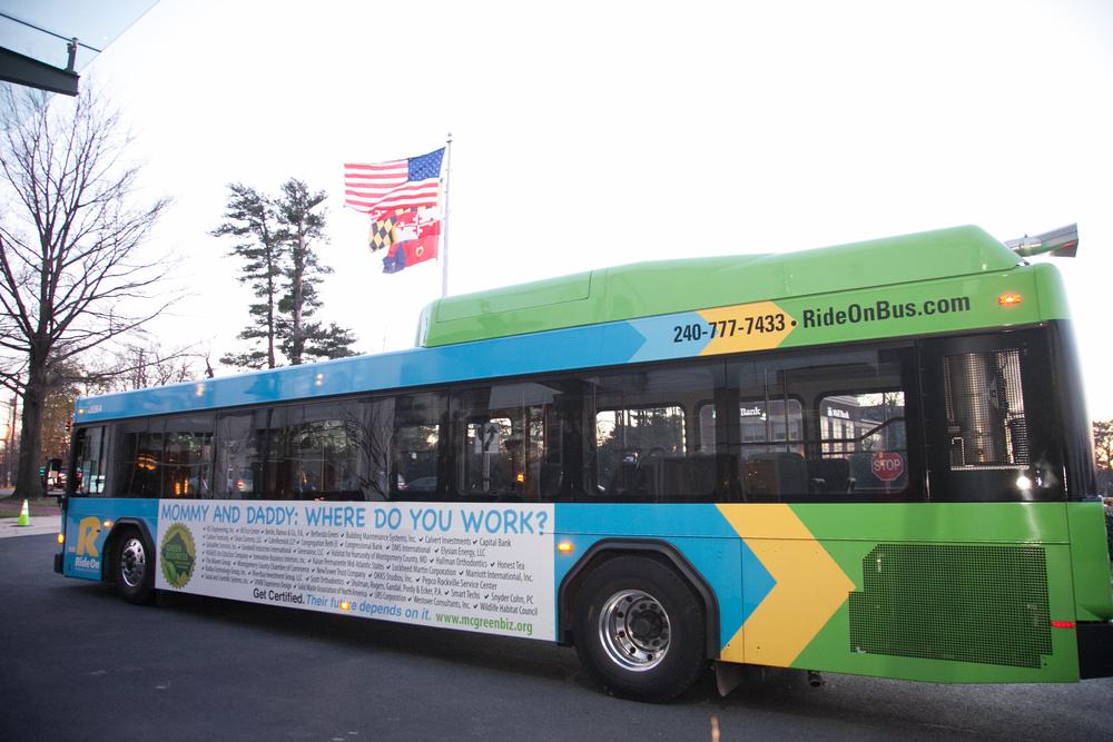 Bus #5.jpg