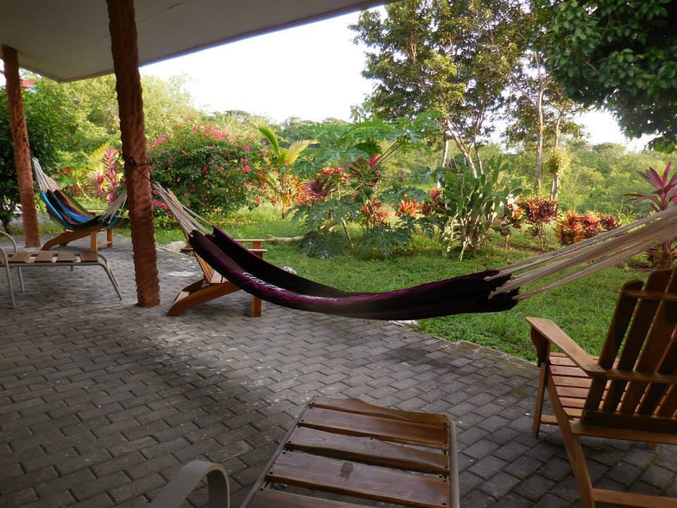 hammocks 2.jpg