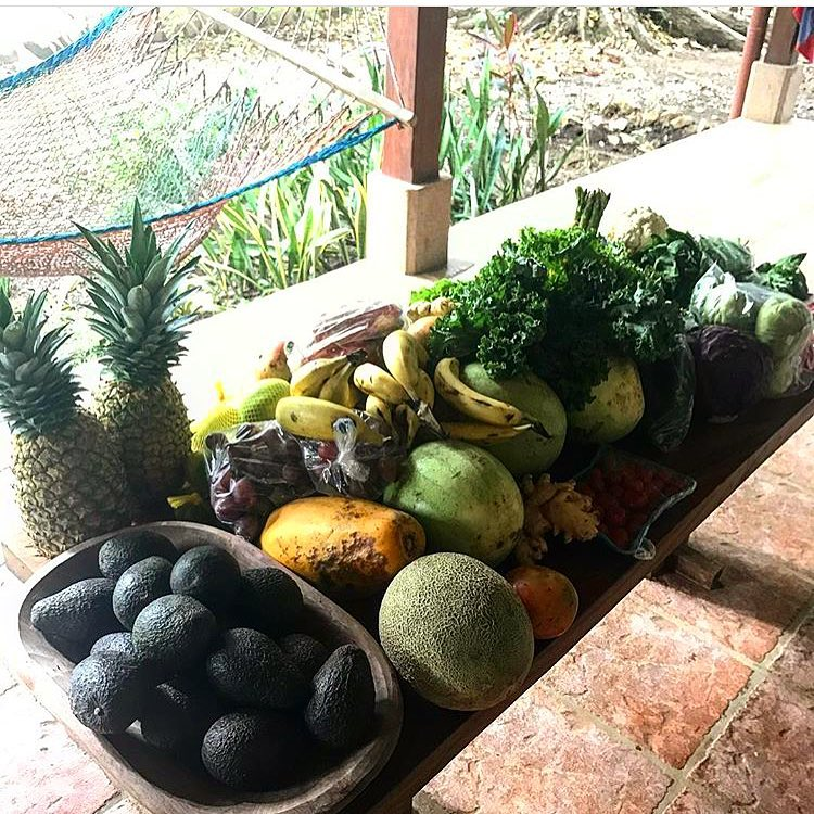 Rayos'haul from a nearby town's market!
