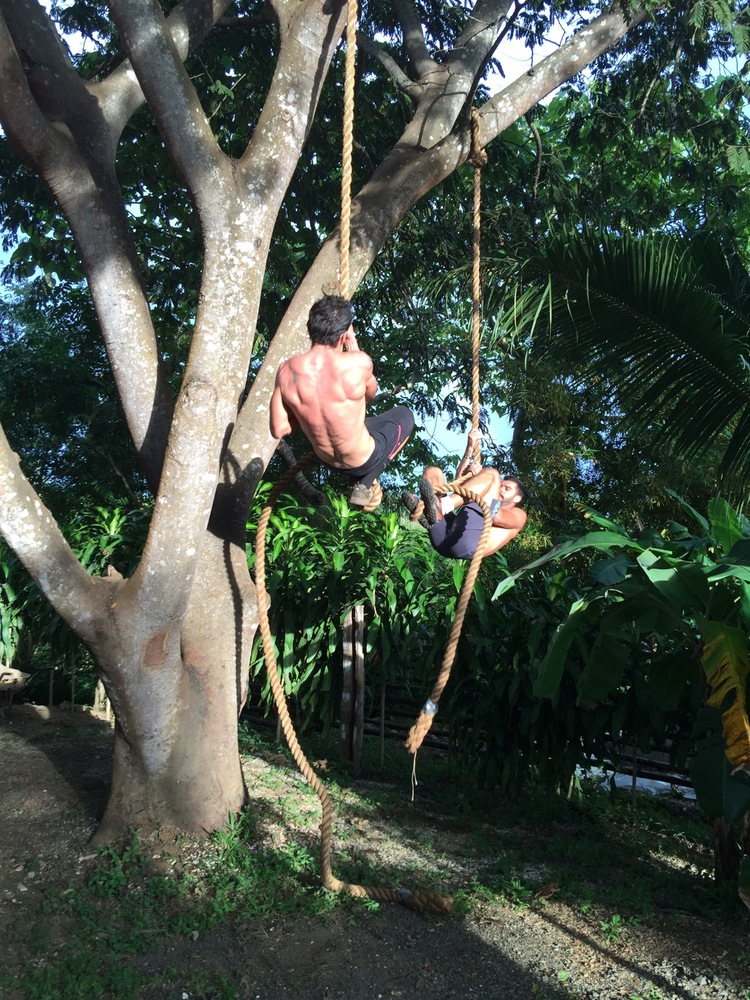 Can you handle the rope climb?!