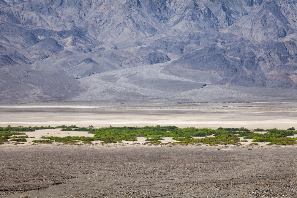 Unnamed springs, Death Valley