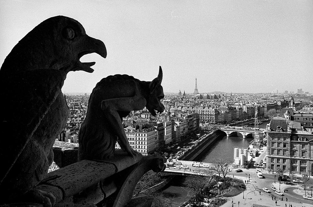 Notre Dame (90-20a).jpg