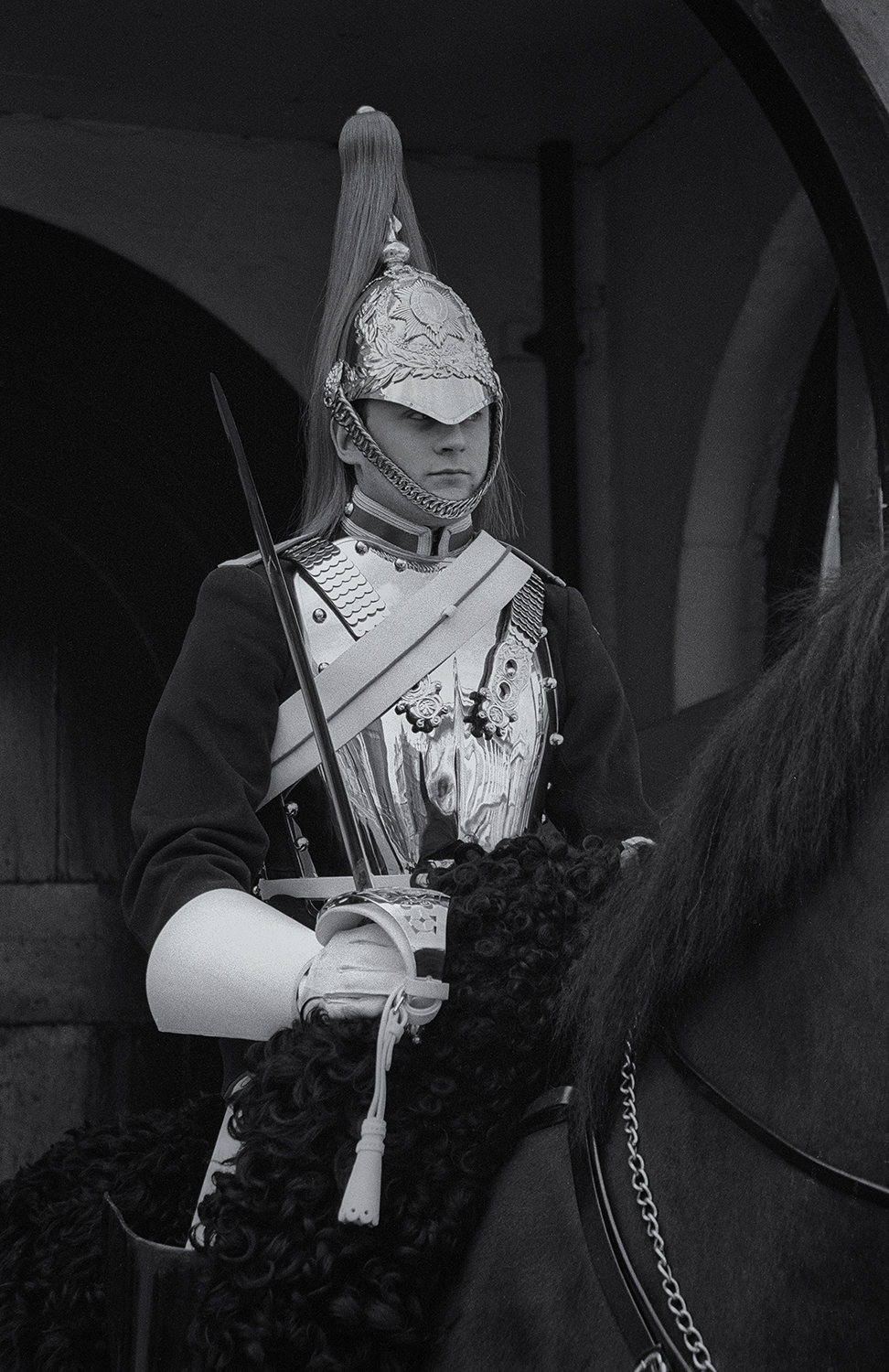Horse_Guard_Don_Conrard.jpg