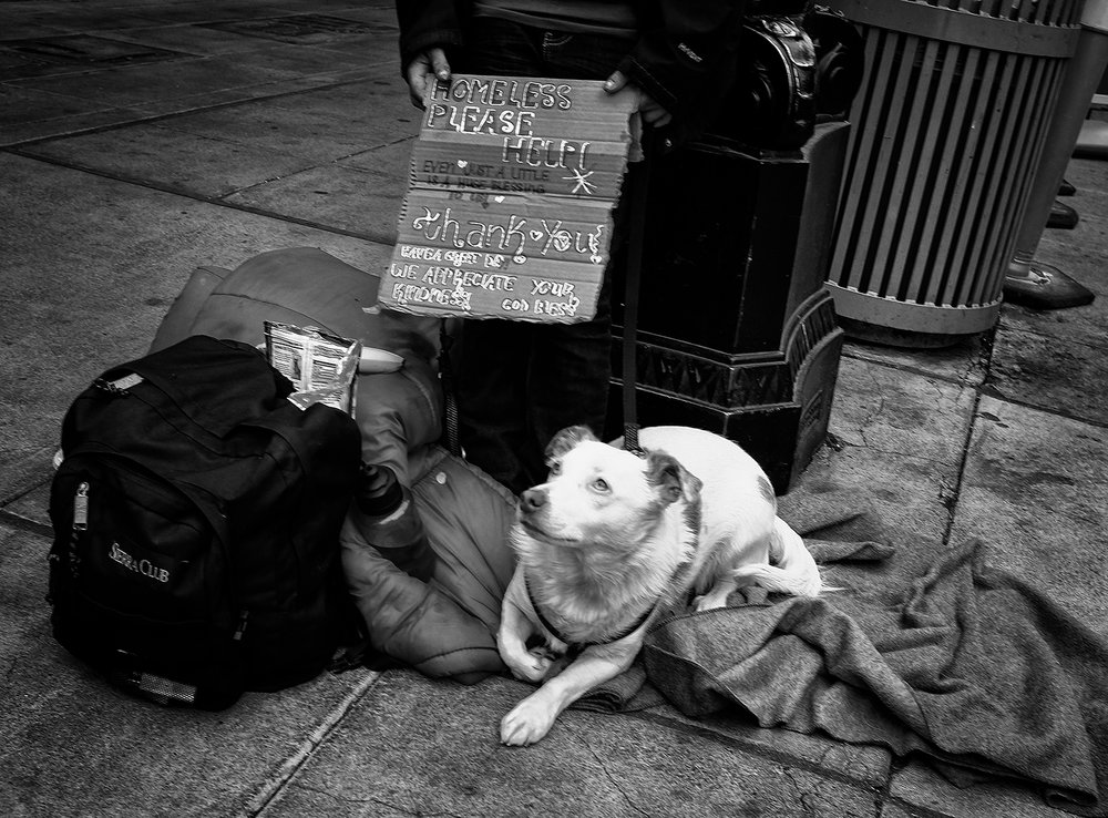 Begger with dog.jpg