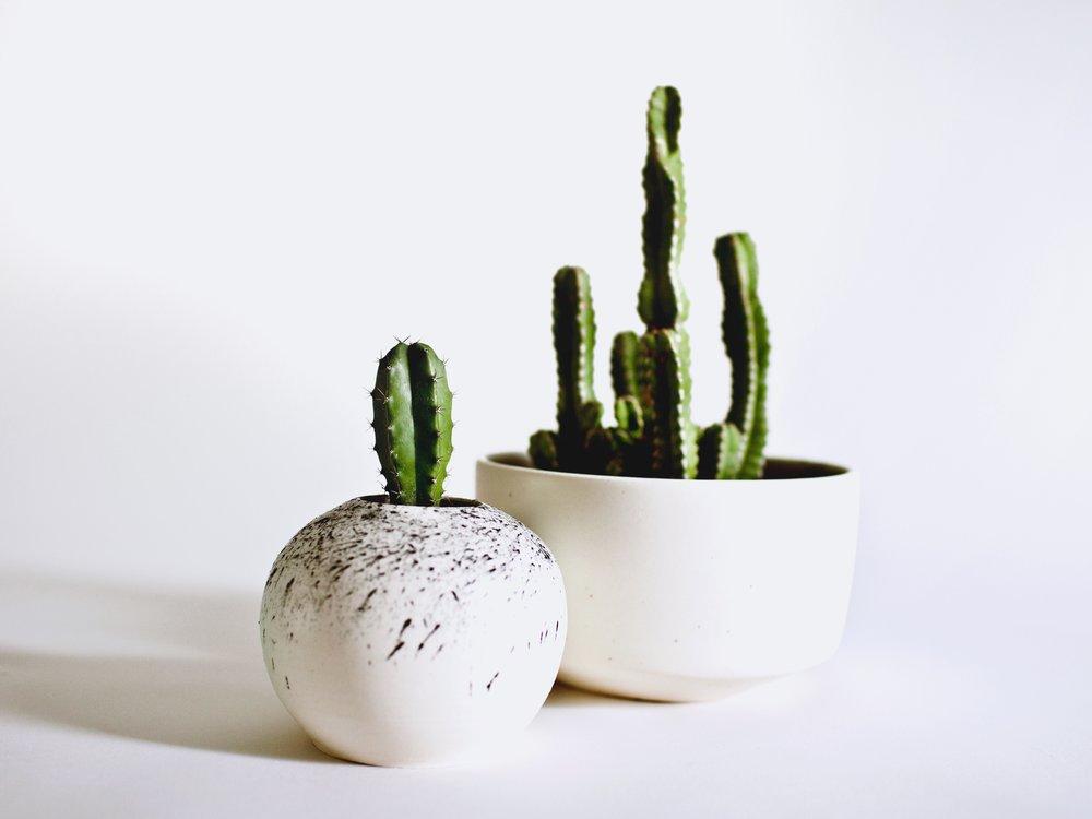 genna_planter.jpg