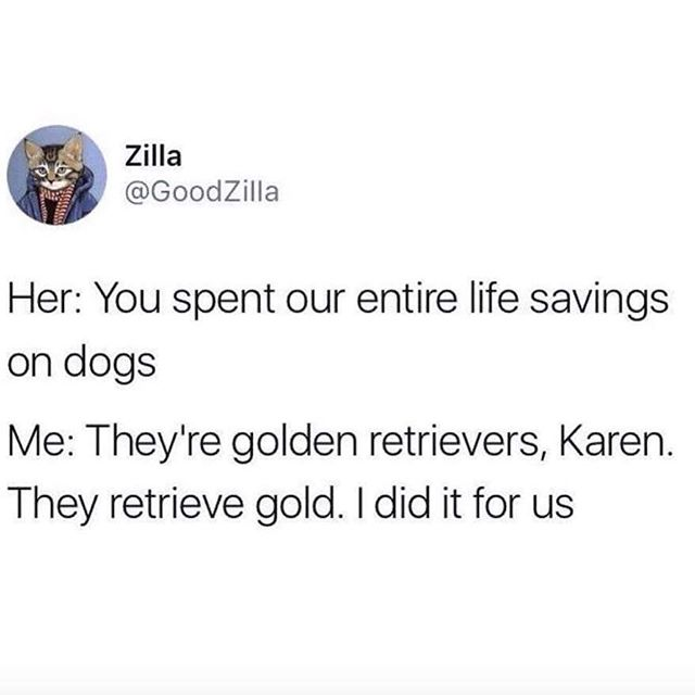 Go get the gold, boy. Go get it.  #dogsaretheworst