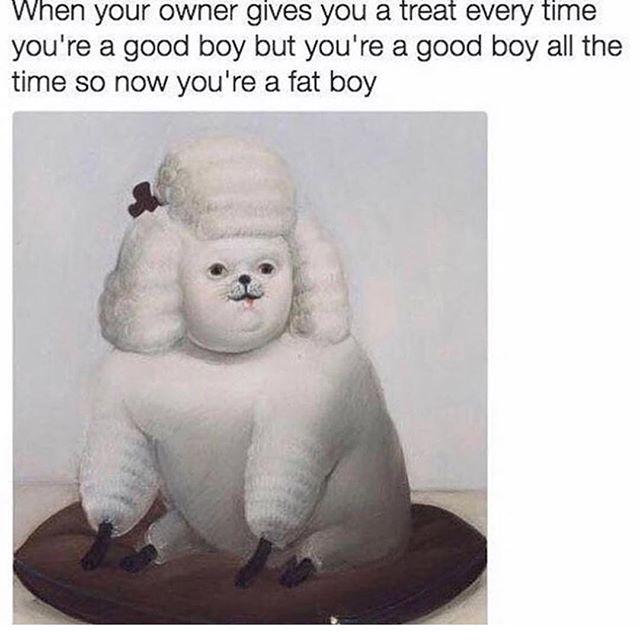 But still a very good boy.  #dogsaretheworst