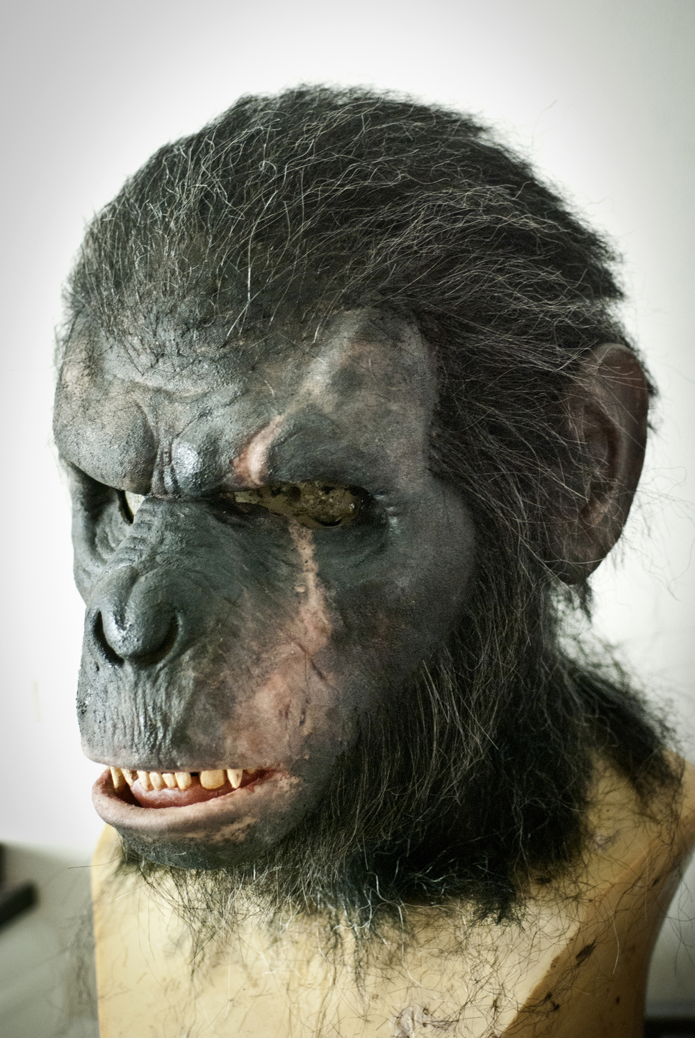 "Koba from ""Dawn of the Planet of the Apes"" - by David Cullen"