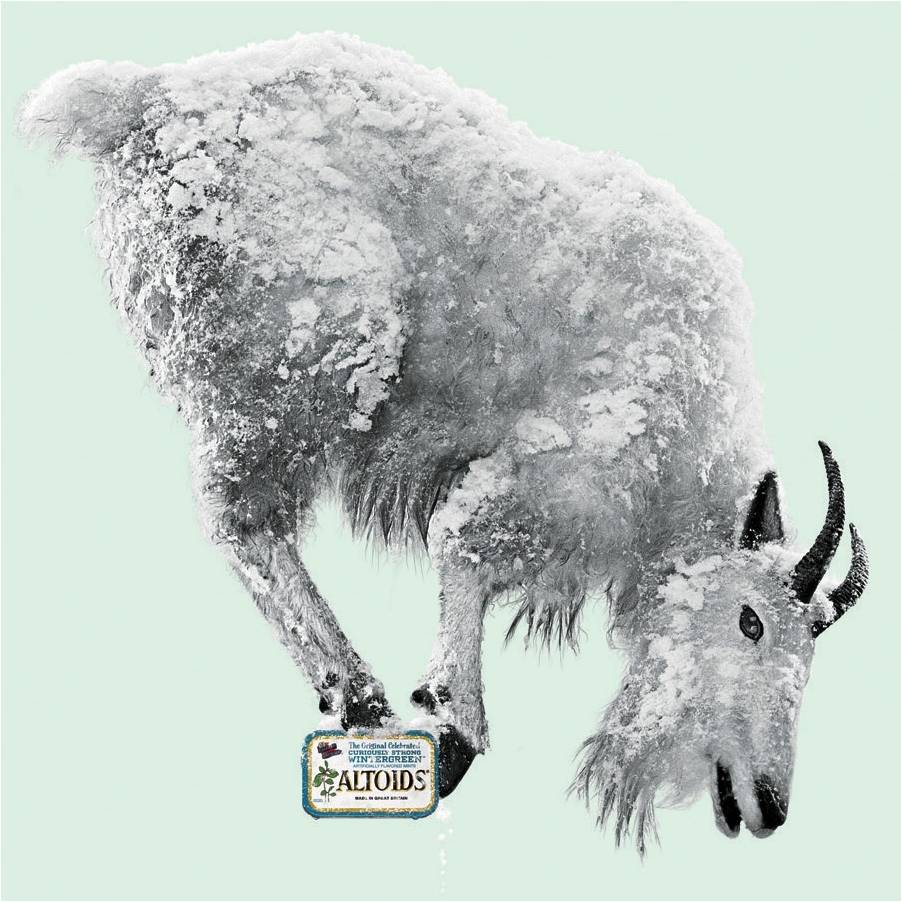 Altoids Goat by Anatomorphex - Robert Devine