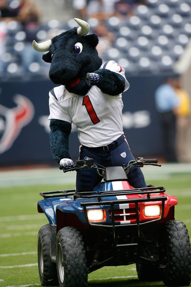 Toro for the Houston Texans by Street Characters