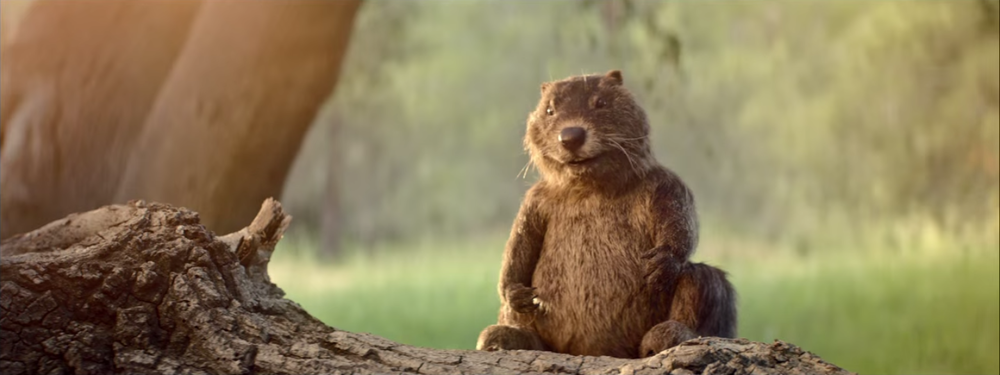 Woodchuck Cider Mascot by Alterian Inc.