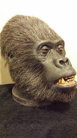 Gorilla display head - Artist/Creator Chris Baer