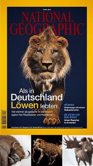 Lion in National Geographic Germany - April 2015 issue. Created by Quagga Associats S.L.