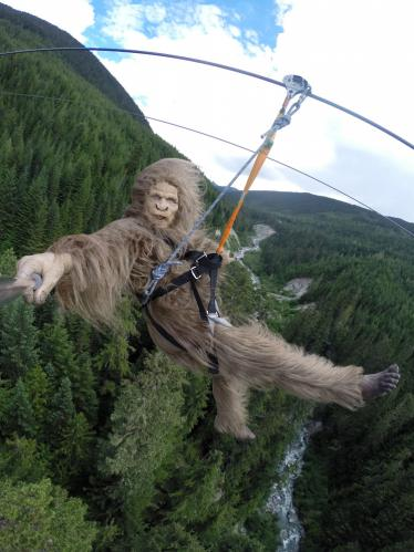 "Ziptreck Ecotours ""The Sasquatch Tour: Zipline Whistler""- Created by Epic FX (Cayley Giene)"