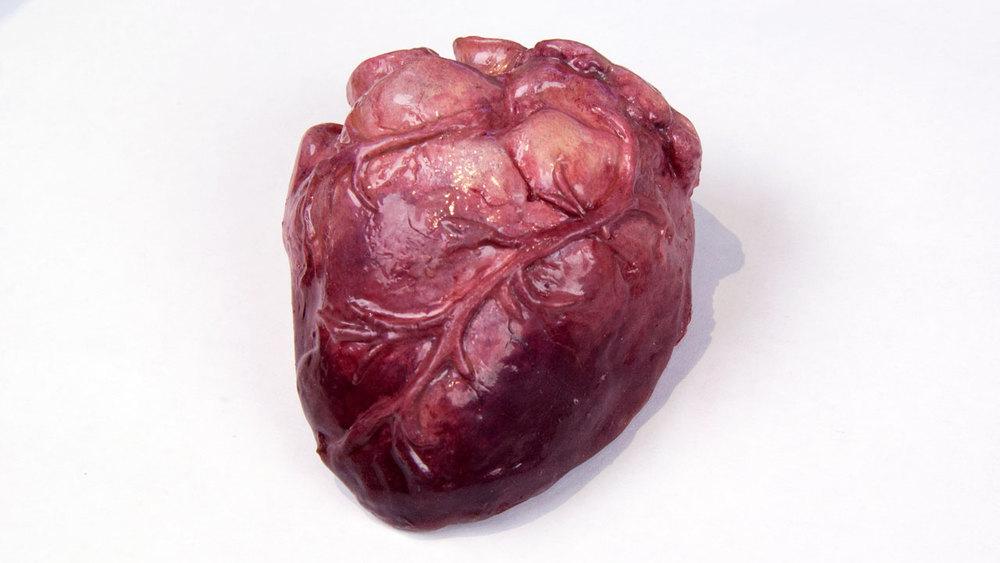 Gelatin Prop Heart