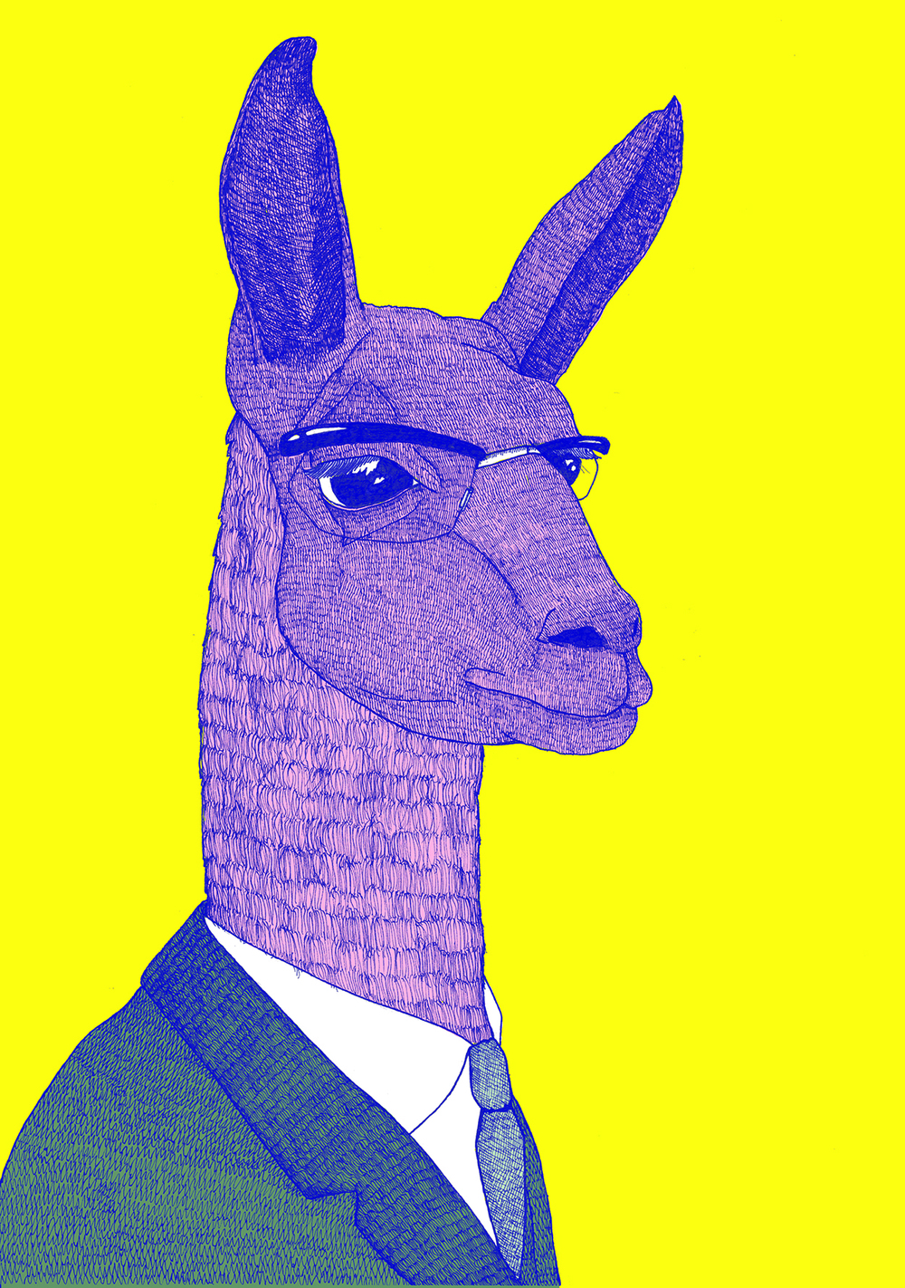 'Llama' By Frank Morris