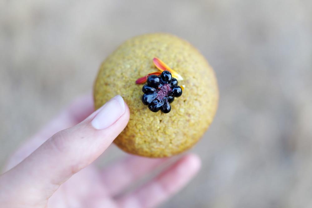 cookie-sand-DSC04456.jpg