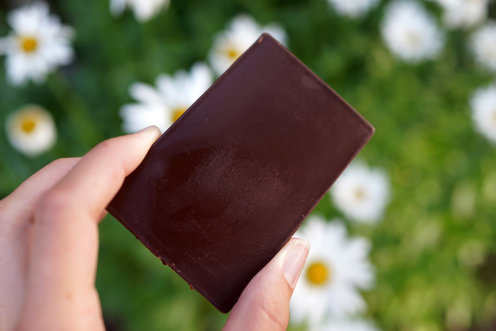 bethanne-chocolate-DSC03625.jpg