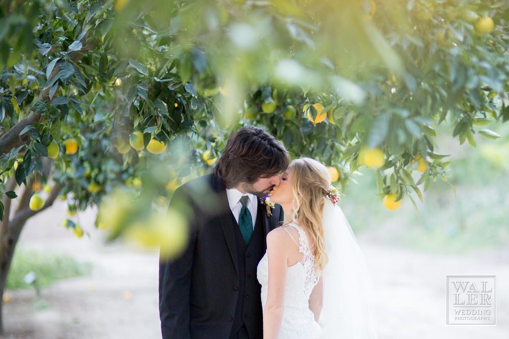 waller weddings_0060.jpg