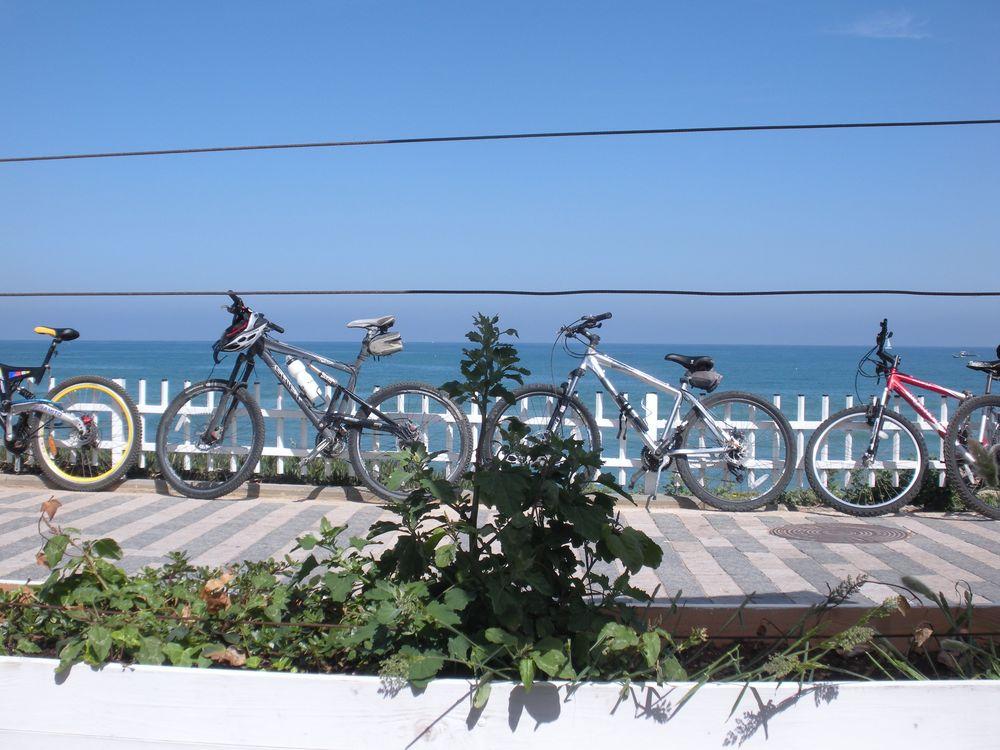 Copy of bikes on the promenade tel aviv.jpg