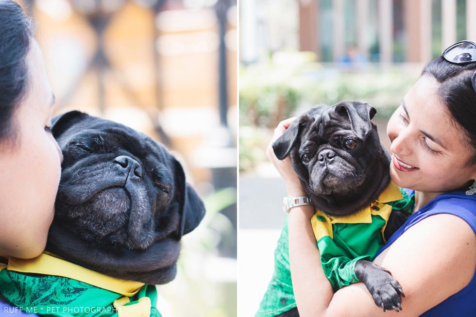 sesion-fotos-perro-pug-surco.jpeg