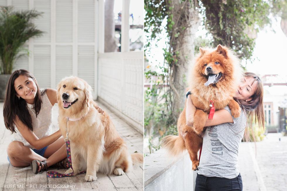 fotografo-profesional-perro-lima-peru.jpg