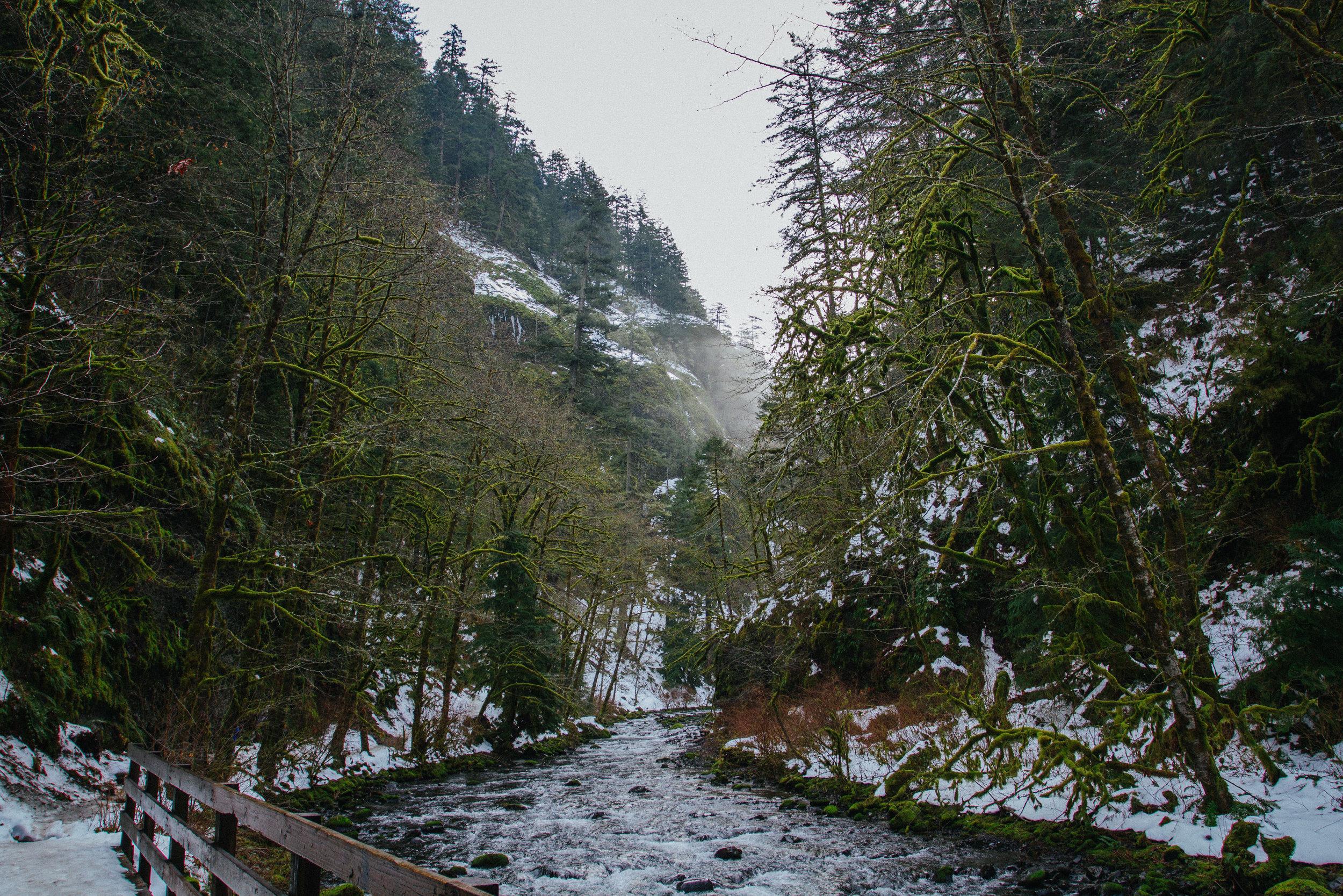 Honeymoon in Portland & Vancouver — Taylor Walsh