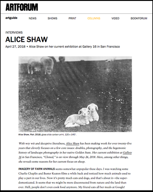 Artforum - artist interview with conceptual artist and photographer Alice Shaw