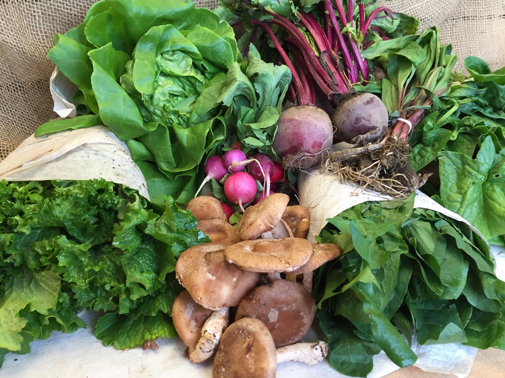 Hydroponic Lettuce, Ramps, Beets, Cremini Mushrooms, Spring Mix, Collards, Spinach.