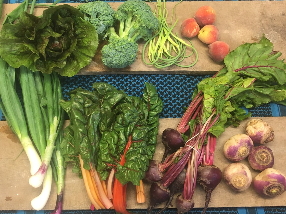 Southern Comfort Small ~ Lettuce, broccoli, garlic scapes, peaches, spring onions, swiss chard, beets, and turnips.