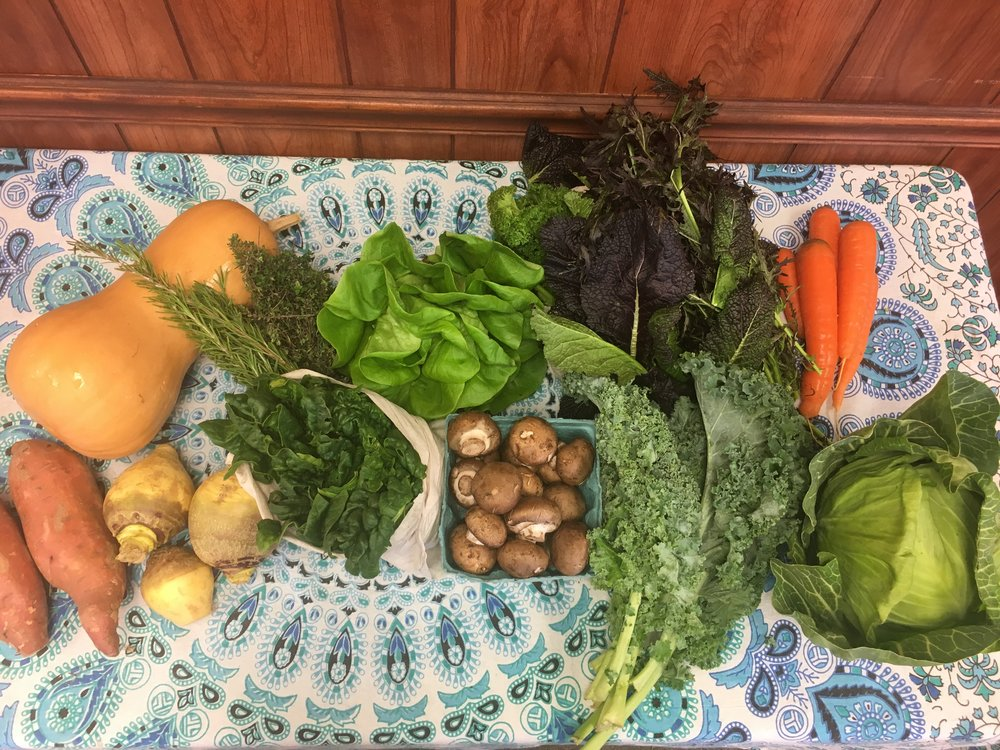 Spice of Life family- butternut squash, herbs, Bibb lettuce, mixed mustard greens, carrots, garnet sweet potatoes, rutabaga, spinach, cremini mushrooms, curly kale, green cabbage.