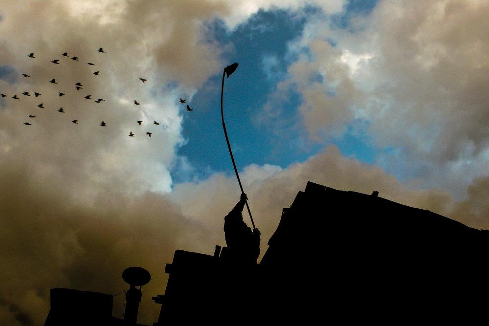 Birds Nest-Ara Madzounian-20.jpg