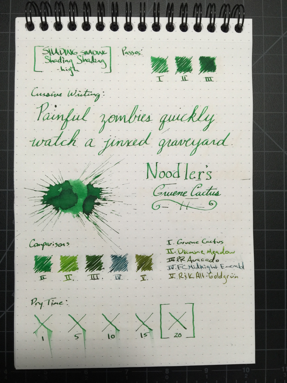 gruene-cactus-review