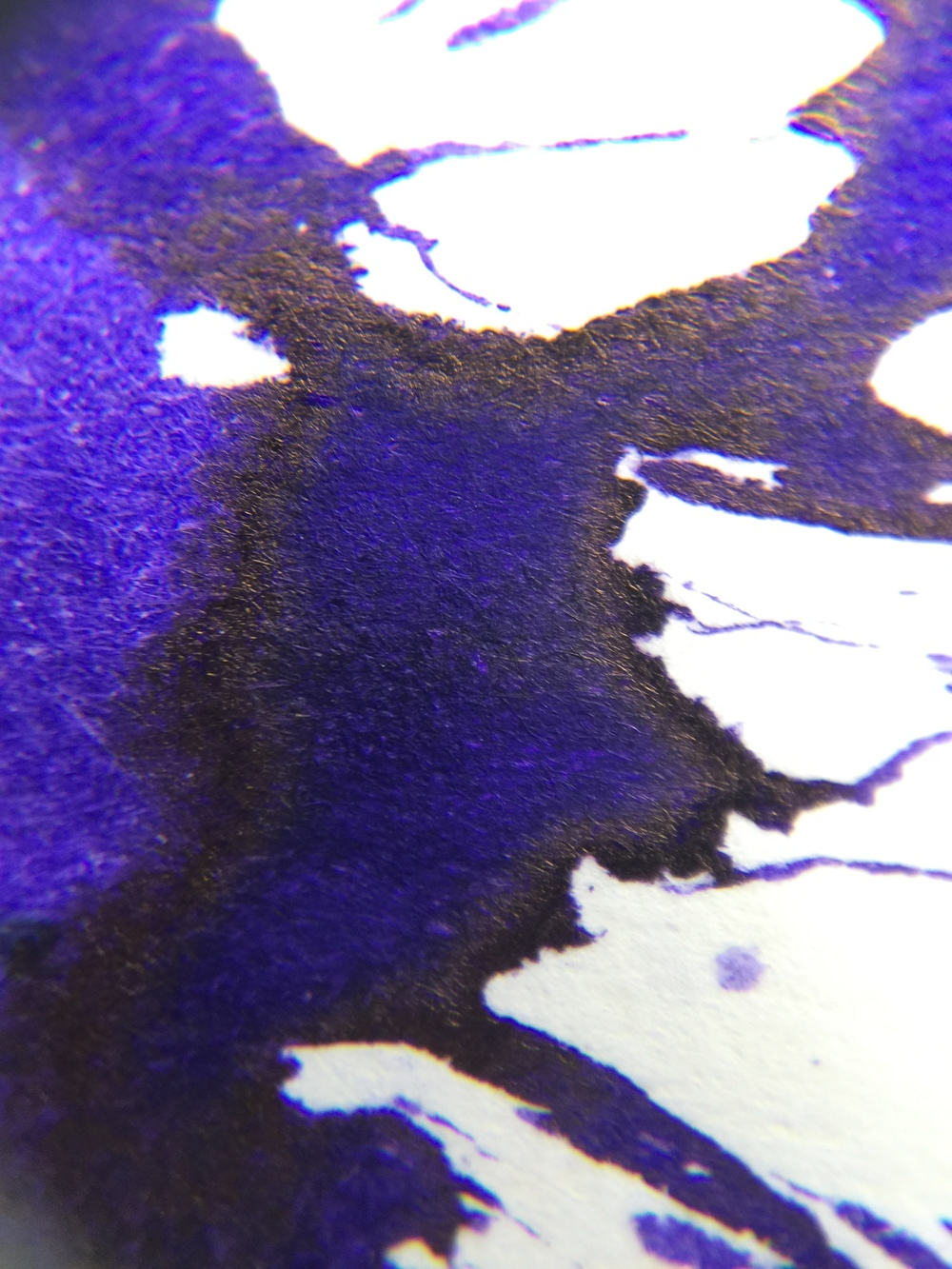 bilberry-sheen