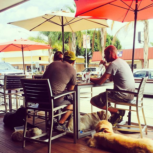 Party of Seven relaxing in the shade for lunch today. #thedetourbistrobar #bestdetourever #culvercity #dineinlaweek #doglife #dogs #lunch #food #dogfriendly