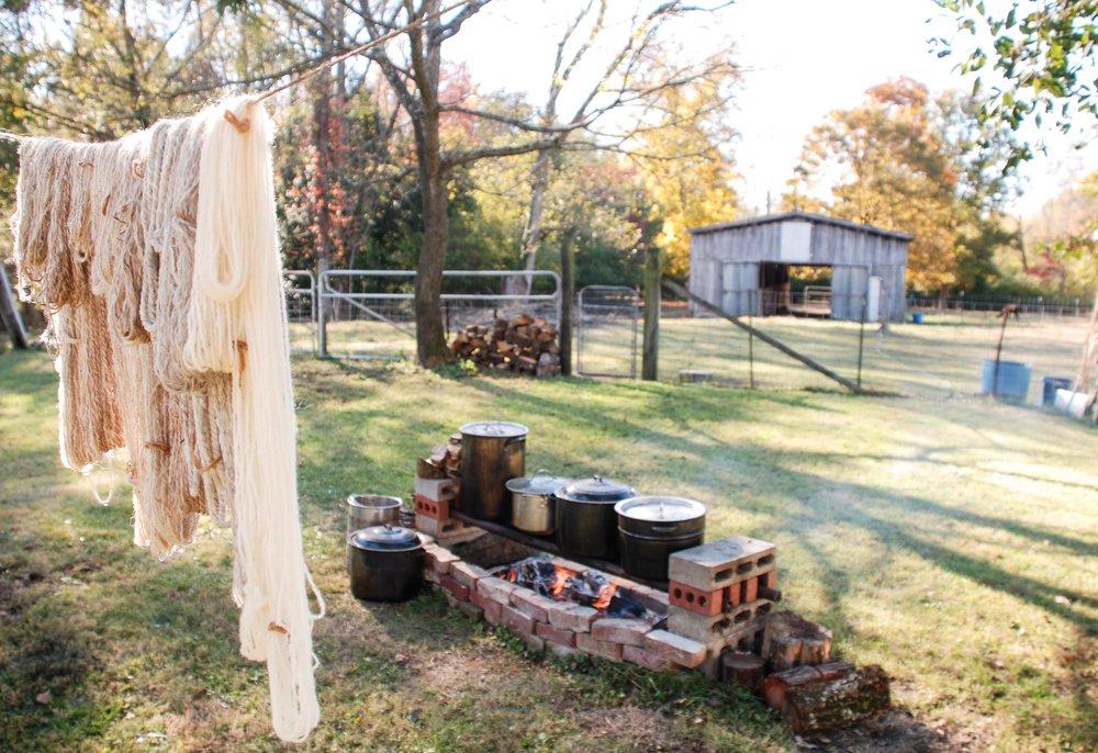 Dye Setup w yarn.jpg