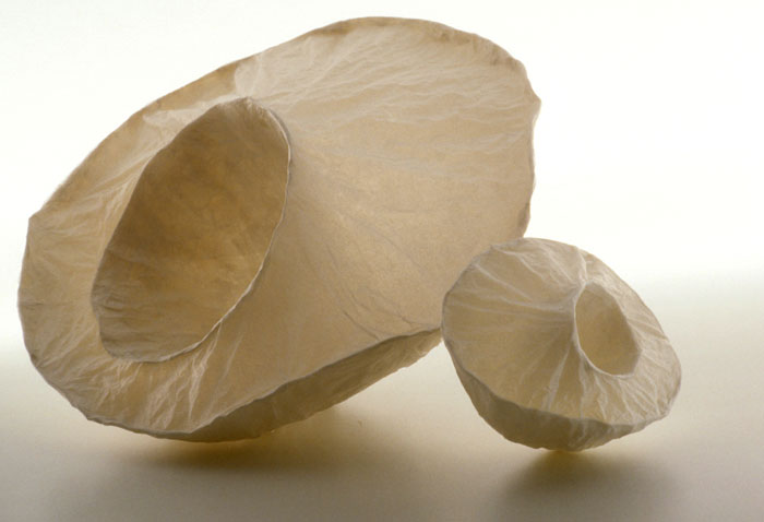 Crater Cups , 2001, paper, 7 x 14 x 8 in.