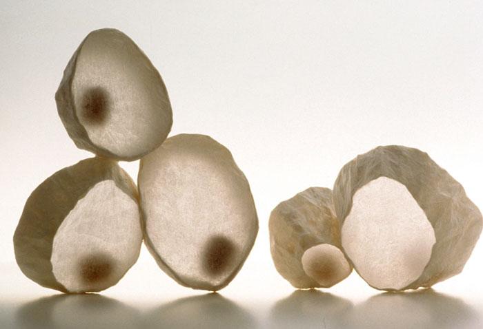 T Cones , 2001, paper, 9 x 15 x 5 in.