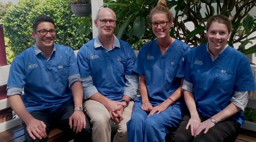 Dr Chris Hong, Dr Peter Prendergast, Miranda Fitzgerald and Dr Katie Wright at Collaroy Veterinary Services