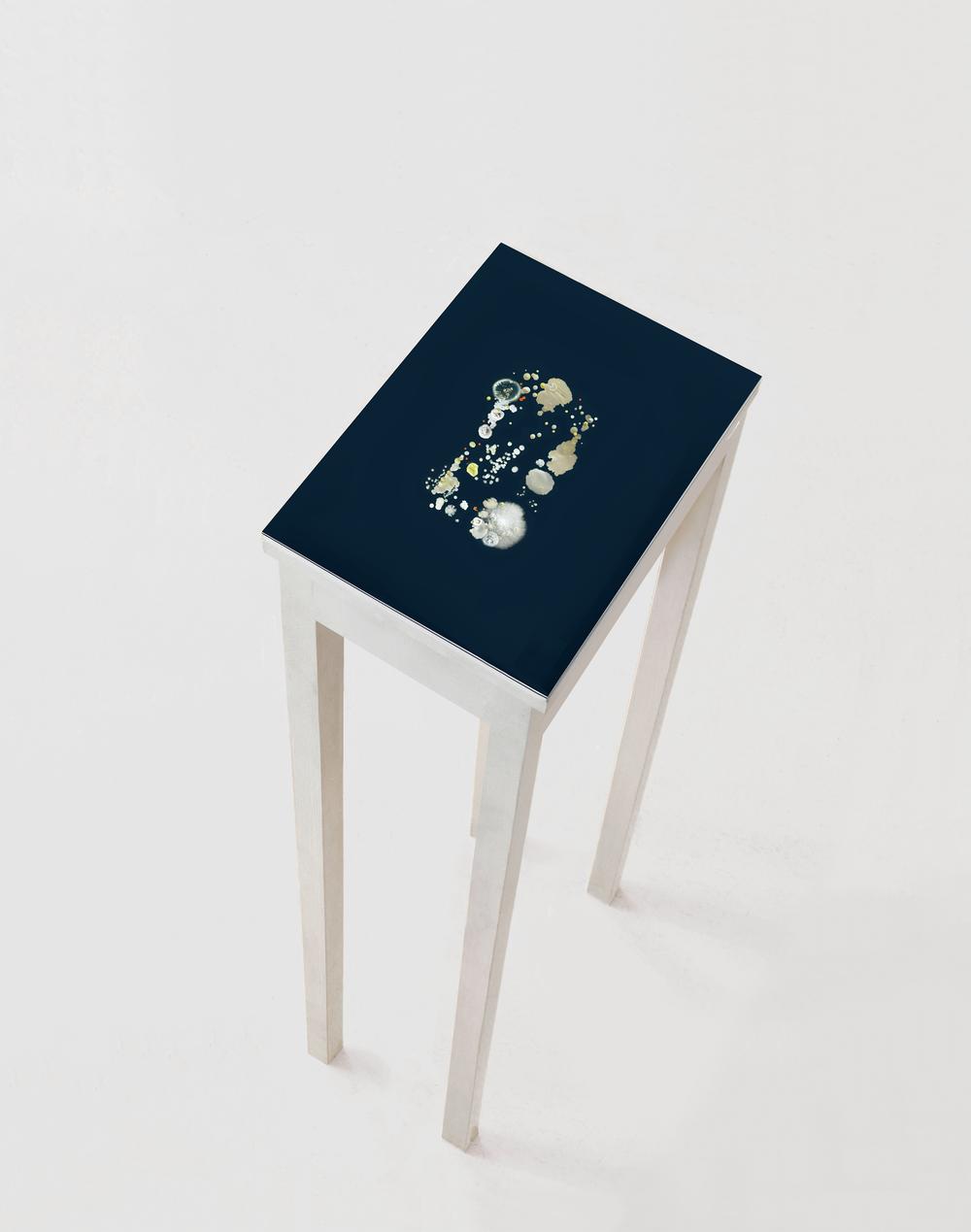 Smartprint, 2016, Micro-organismes, résine d'inclusion, gélose. Présentation sur tablette en bois.