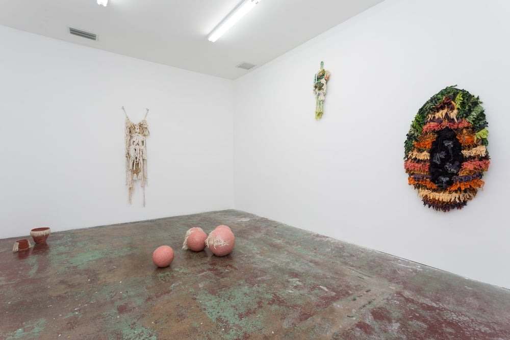installation view, Bananas, Gallery Diet, Miami, June 19 - September 5, 2015