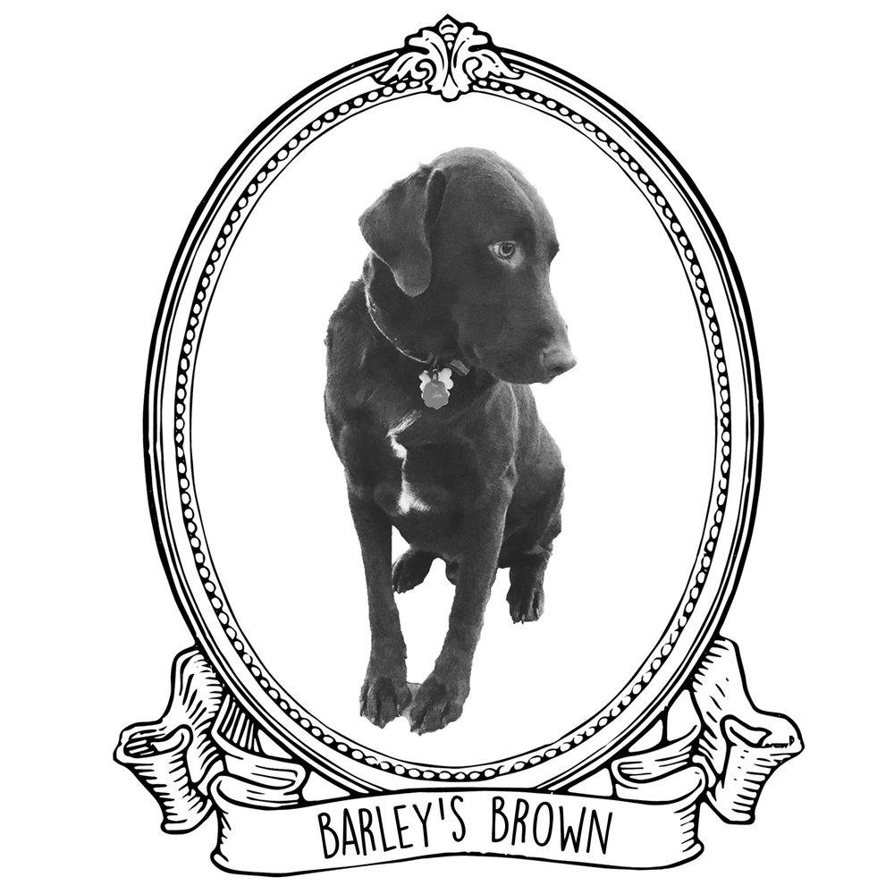 Barley's Brown.jpg