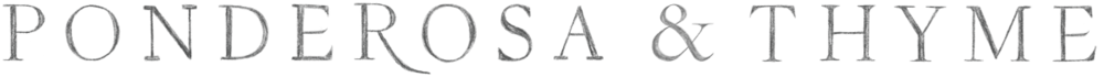 5a9f89c438aaa40001cecaa2_P&T-Final-Simplified-Logo.png